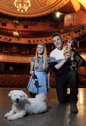 Dog-Auditions-for-West-Midlands-Opera